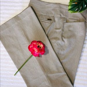Express Women's Dress Pants Size 10R
